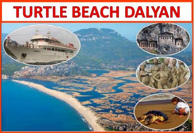 Turtle Beach Dalyan